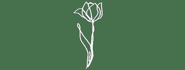 Illustrasjon av en blomst