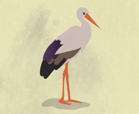 en stork